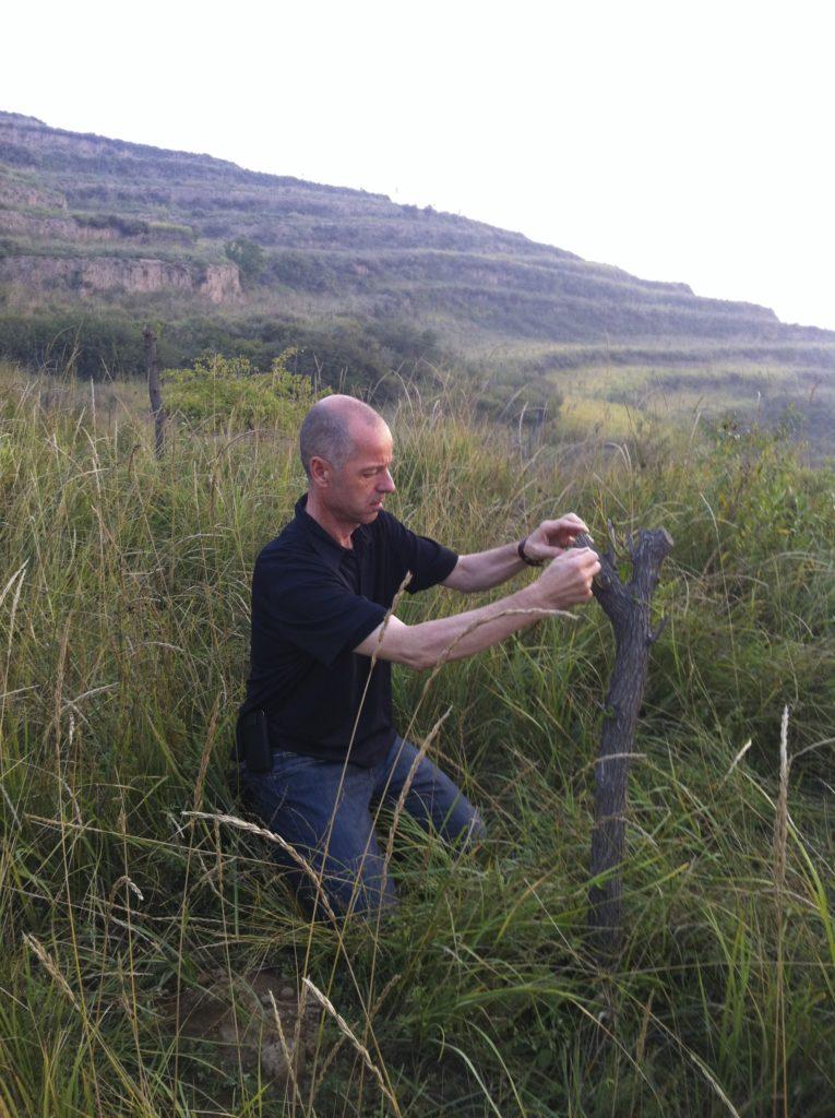 wiederaufforstung wolfgang frey china taiyuan