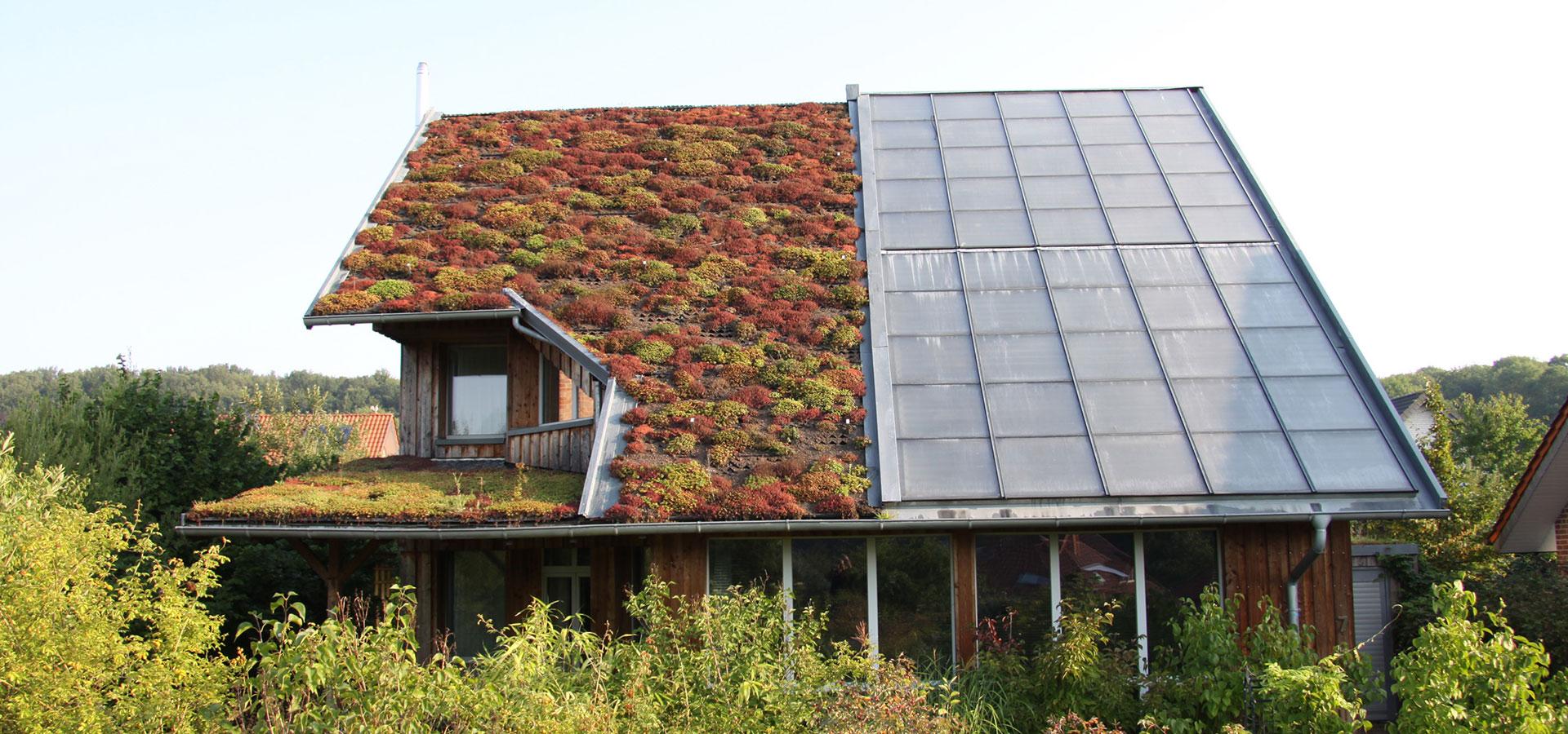 ökologisches Haus frey architekten projekte einfamilienhaus ökologisch